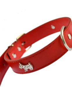 Larger dog band,18*0.75 inch red