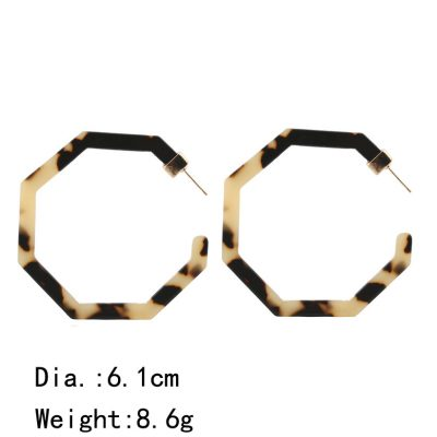 Best selling Polygonal Acrylic Large Edition Earrings Acetate Sheet Personality Leopard Earrings Color mixing YLX-028